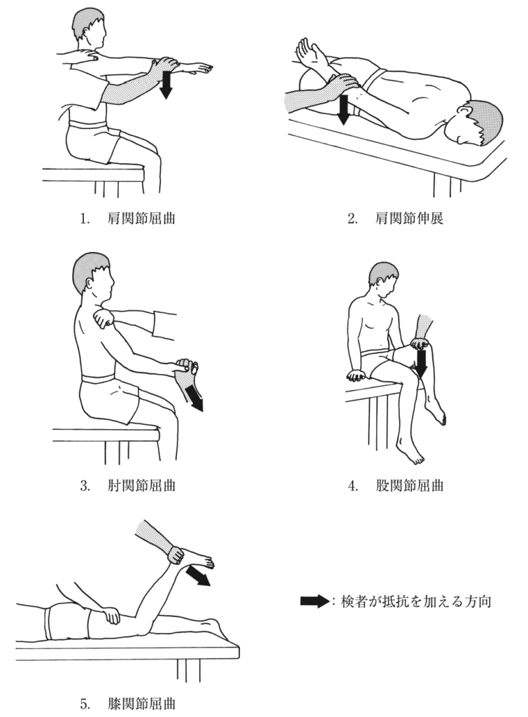 Danielsらの徒手筋力テストにおける段階4の検査法で正しいのはどれか。 (第54回理学療法士国試【午後-2】)